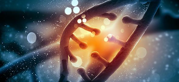 מחקר חדש: ריצוף גנומי