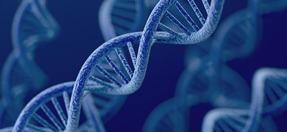 כיצד מתבצע אבחון גנומי מרקמה