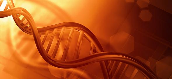 מה הוא אבחון גנומי מרקמה