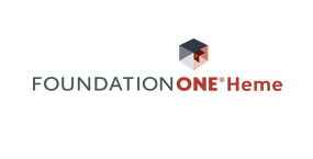 foundationONEHEME